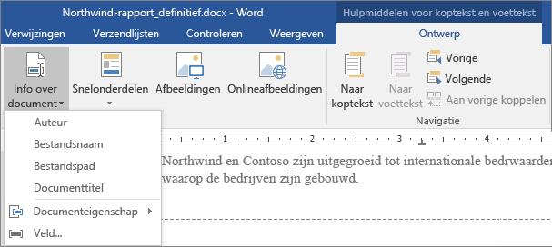 De opties van Info over document worden weergegeven op het tabblad Hulpmiddelen voor kopteksten en voetteksten.