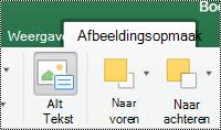 Knop alternatieve tekst voor afbeeldingen op het lint in Excel voor Mac