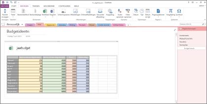 Overzicht van een Excel-spreadsheet op een pagina in OneNote