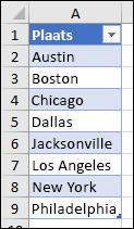 Excel-tabel die wordt gebruikt als bron voor de gegevensvalidatielijst