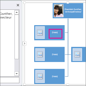 SmartArt-organigram met foto's, waarin vak is gemarkeerd om aan te geven waar u tekst kunt invoeren