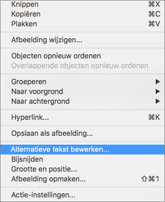 Context menu voor afbeeldingen waarvoor de optie alternatieve tekst is geselecteerd.