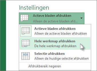 Klik onder Instellingen op Hele werkmap afdrukken