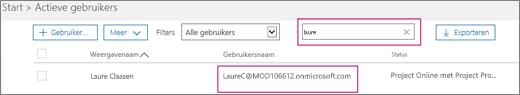 Schermafbeelding van een sectie van de pagina Actieve gebruikers met een zoekterm, 'laure', getypt in het zoekvak naast de optie Filters, die is ingesteld op Alle gebruikers. Hieronder worden de volledige weergavenaam en gebruikersnaam weergegeven.