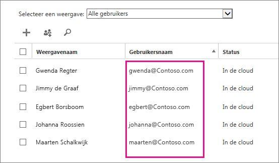 Kolom Gebruikersnaam in het Office 365-beheercentrum.