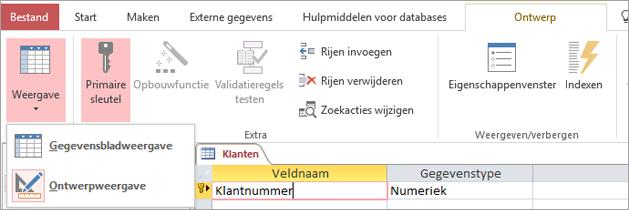 De tabelontwerpfunctie schakelen tussen de gegevensbladweergave en de ontwerpweergave