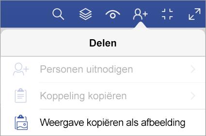 Opties voor delen in Visio Viewer voor iPad