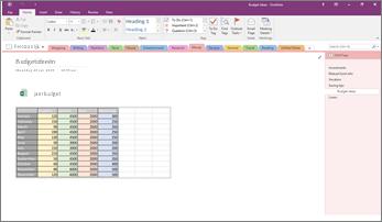Schermafbeelding van een notitieblok van OneNote 2016 met ingesloten Excel-spreadsheet.