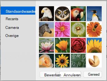 Opties voor afbeelding van het contact van Outlook