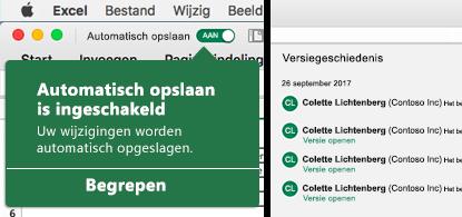 Excel-lint met links de ballon Automatisch opslaan en rechts een versiegeschiedenislijst.