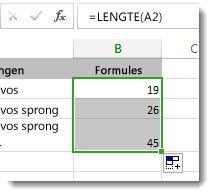 Meerdere LENGTE-functies in een werkblad invoeren