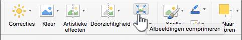 Selecteer onder het tabblad afbeelding afbeeldingen comprimeren