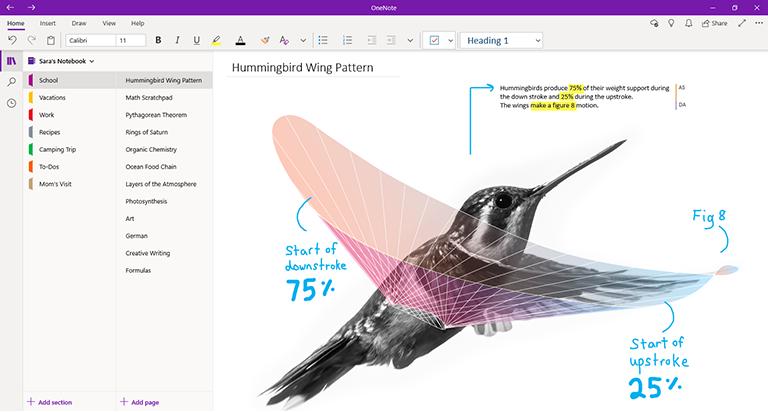 Schermafbeelding van OneNote voor Windows 10