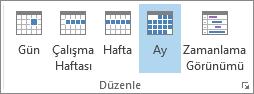 Rangschik groepen op het tabblad Start: dag, week, werkweek, maand en planning