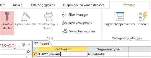 Een primair sleutelveld selecteren in een nieuwe Access-tabel