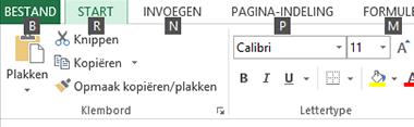 Excel 2013 Tiptoetsen op het Lint