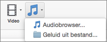 Menu Audio invoegen met opties Audio uit bestand en Audiobrowser