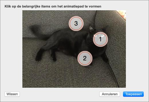 Toont een foto met enkele genummerde, belangrijke punten die in een bewegende achtergrond in PowerPoint kunnen worden gebruikt