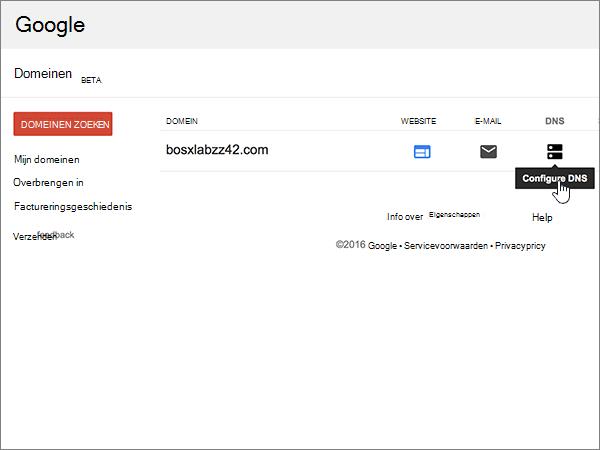 Google-Domains-BP-Configure-1-3