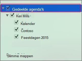 Gedeelde agenda's