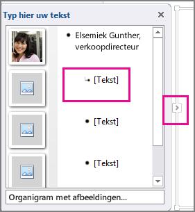Deelvenster Tekst in SmartArt-afbeelding, waarin [Tekst] en deelvenster Tekst zijn gemarkeerd