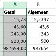 voorbeeld van hoe getallen worden weergegeven in verschillende notaties, zoals Getal en Algemeen.