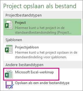 projectbestand opslaan als microsoft excel-werkmap