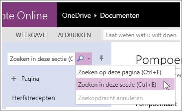 Schermafbeelding van het zoeken van een sectie in OneNote Online.