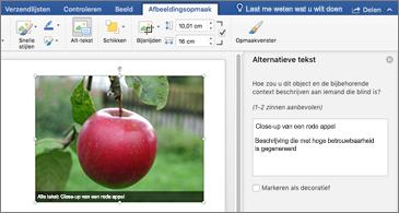 Word-document met een afbeelding en het deelvenster met alternatieve tekst aan de rechterkant