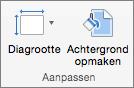 Schermafbeelding van de groep Aanpassen met de opties voor Diagrootte en Achtergrond opmaken.