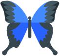Illustratie: een blauwe vlinder