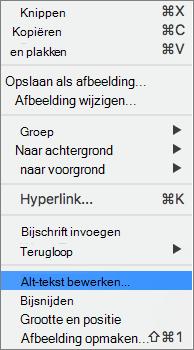 Alternatieve tekstoptie in het contextmenu in Word