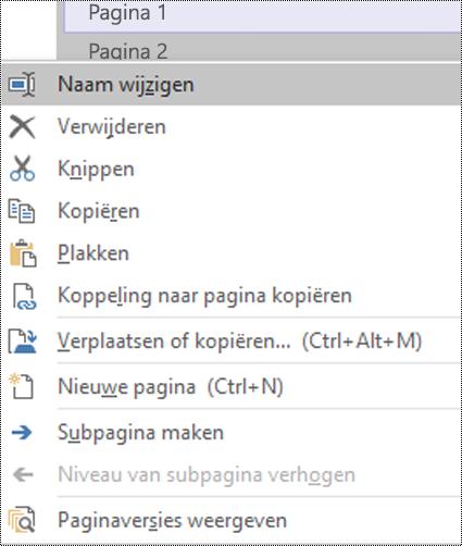 Dialoogvenster Een paginanaam wijzigen in OneNote voor Windows