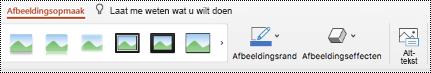 Knop Alternatieve tekst op het lint voor een afbeelding in PowerPoint voor Mac.