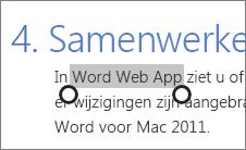 Tekst selecteren in de aanraakmodus in Office Online