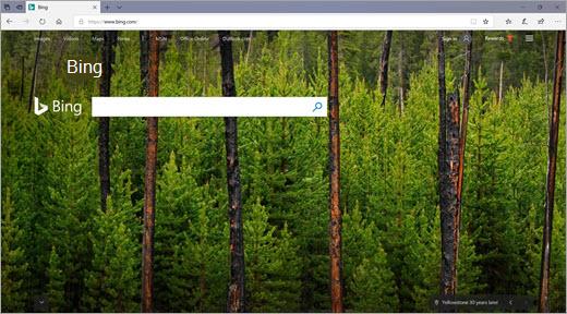 De startpagina van Bing
