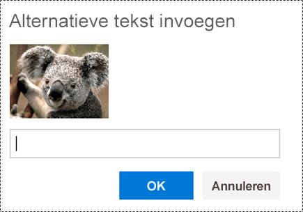 Alternatieve tekst toevoegen aan afbeeldingen in de webversie van Outlook.