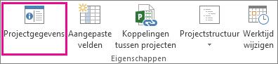 Projectgegevens op het tabblad Project