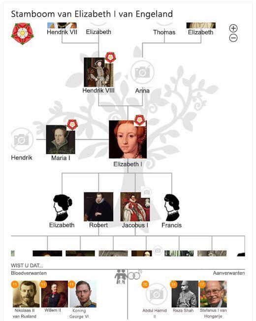 De stamboom van Elizabeth I in Bing