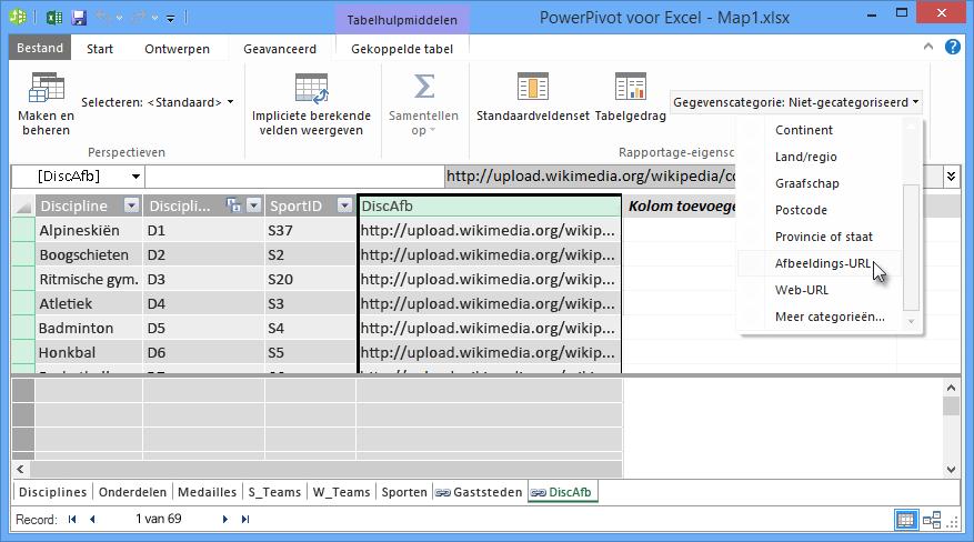 De gegevenscategorie instellen in PowerPivot