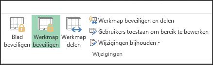 De optie Werkmap beveiligen op het lint is gemarkeerd in een beveiligde werkmap