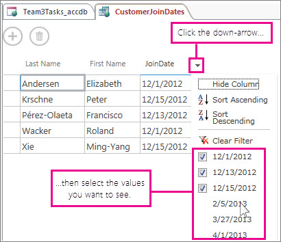 Een kolom in een query in een Access-app filteren.