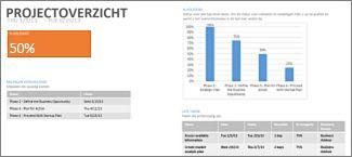 Rapport Projectoverzicht