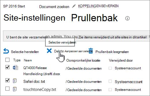 Pagina Prullenbak van SharePoint 2016 met gemarkeerde knop Verwijderen
