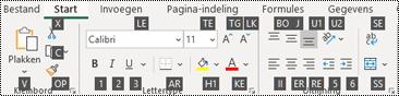 Toetstips op het Excel -lint