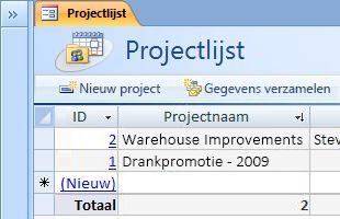 De databasesjabloon Projecten