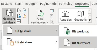 De optie Uit tekstbestand is gemarkeerd op het tabblad Gegevens.