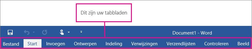 Een afbeelding van de tabbladen op het Word-lint.