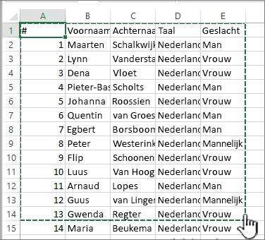 Excel-werkblad met gemarkeerd bereik