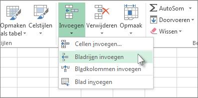 Klik op Invoegen en klik daarna op Bladrijen invoegen